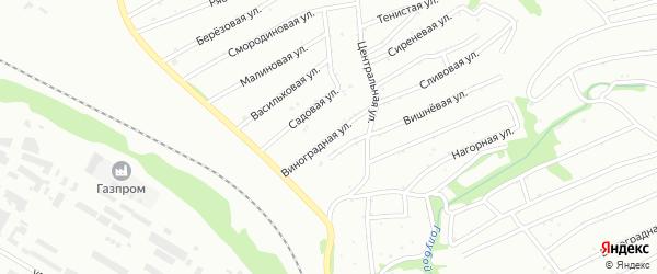 Виноградная улица на карте территории сдт Барнаульского с номерами домов