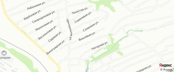 Вишневая улица на карте садового некоммерческого товарищества N 8 с номерами домов