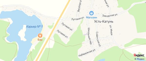 Луговая улица на карте поселка Усть-Катунь с номерами домов