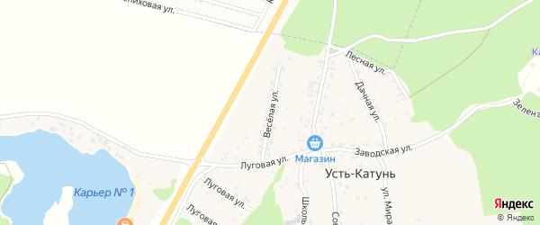 Веселая улица на карте поселка Усть-Катунь с номерами домов