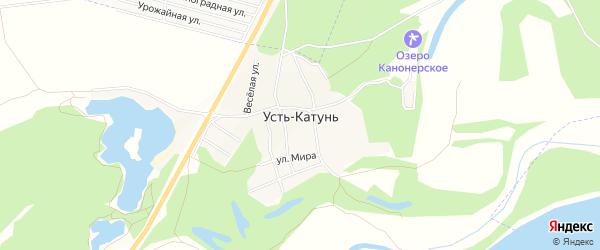 Карта садового некоммерческого товарищества Катуня в Алтайском крае с улицами и номерами домов
