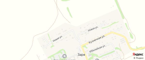 Новая улица на карте поселка Зари с номерами домов