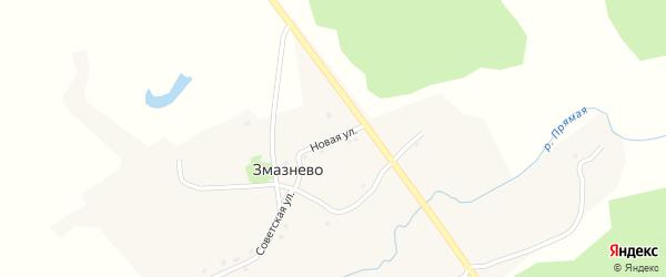 Новая улица на карте поселка Змазнево с номерами домов