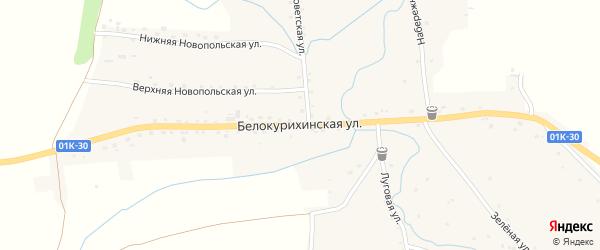 Белокурихинская улица на карте села Россоши с номерами домов