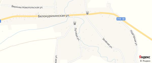 Луговая улица на карте села Россоши с номерами домов