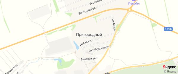Карта Пригородного поселка в Алтайском крае с улицами и номерами домов