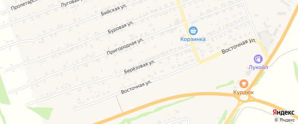 Березовая улица на карте садового некоммерческого товарищества Радуги с номерами домов