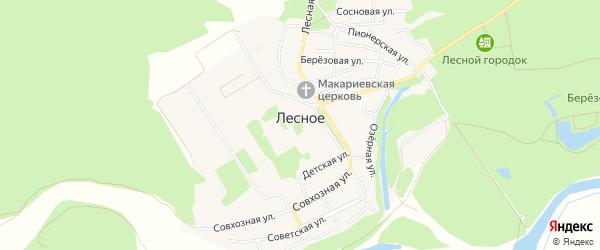 Карта Лесного села в Алтайском крае с улицами и номерами домов