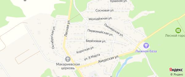 Березовая улица на карте садового некоммерческого товарищества N 12 с номерами домов