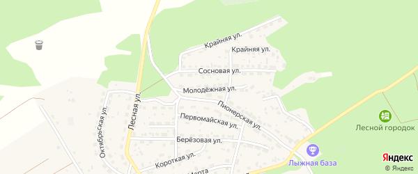 Молодежная улица на карте Лесного села с номерами домов