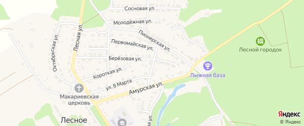 Восточный переулок на карте Лесного села с номерами домов