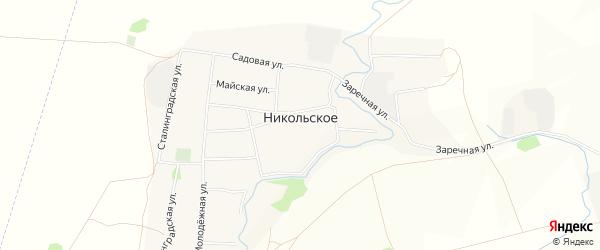 Карта Никольского села в Алтайском крае с улицами и номерами домов