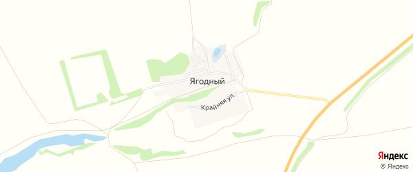 Карта Ягодного поселка в Алтайском крае с улицами и номерами домов