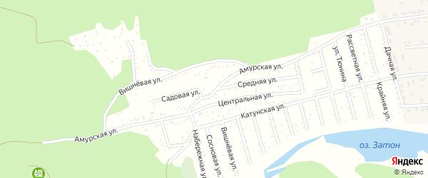 Амурская улица на карте Амурского садового некоммерческого товарищества с номерами домов