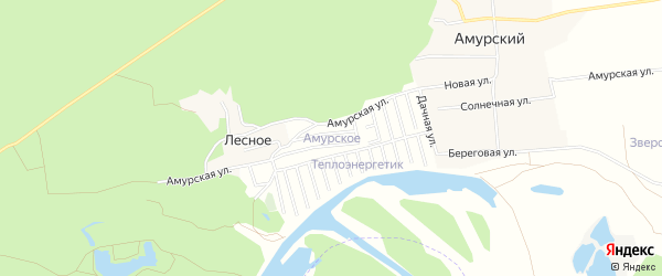 Карта Амурского садового некоммерческого товарищества в Алтайском крае с улицами и номерами домов