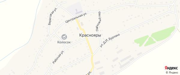 Центральный переулок на карте села Краснояры с номерами домов