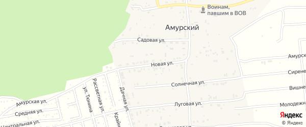Новая улица на карте Амурского поселка с номерами домов