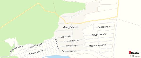 Карта Амурского поселка в Алтайском крае с улицами и номерами домов