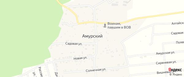 Амурский 2-й переулок на карте Барнаула с номерами домов