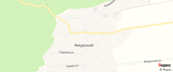 Центральная улица на карте Амурского поселка с номерами домов