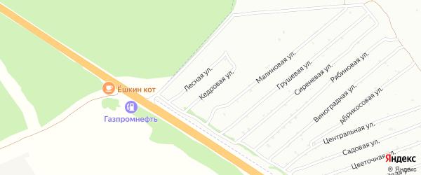Кедровая улица на карте садового некоммерческого товарищества Монтажника с номерами домов