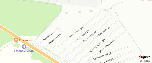 Малиновая улица на карте садового некоммерческого товарищества Монтажника с номерами домов