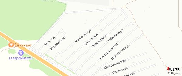 Грушевая улица на карте садового некоммерческого товарищества Монтажника с номерами домов