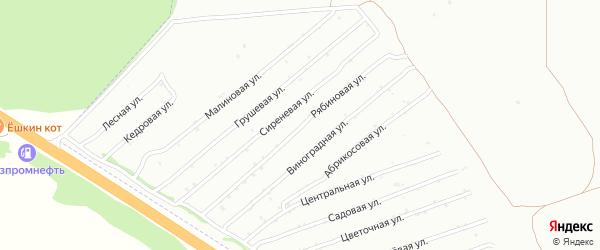 Рябиновая улица на карте садового некоммерческого товарищества Монтажника с номерами домов
