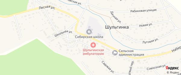 Школьная улица на карте села Шульгинки с номерами домов