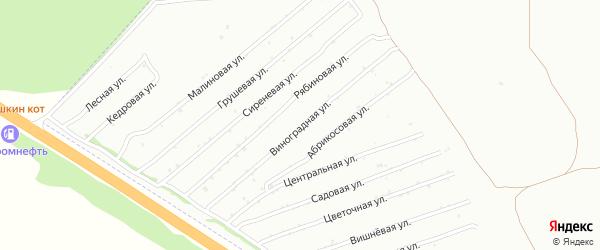 Виноградная улица на карте садового некоммерческого товарищества Монтажника с номерами домов