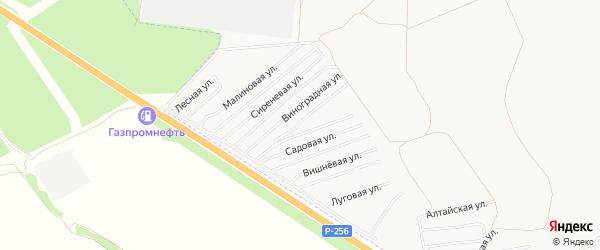 Карта садового некоммерческого товарищества Монтажника города Бийска в Алтайском крае с улицами и номерами домов