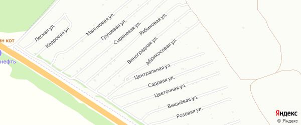 Цветочная улица на карте садового некоммерческого товарищества Монтажника с номерами домов