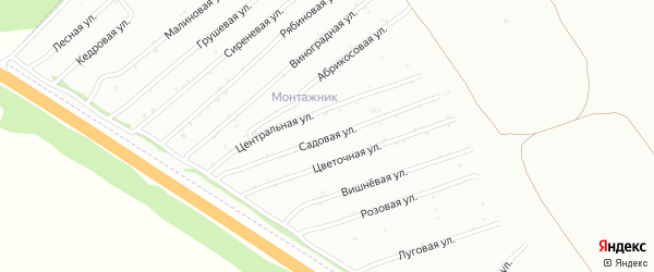 Садовая улица на карте садового некоммерческого товарищества Монтажника с номерами домов