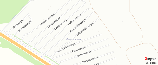 Абрикосовая улица на карте садового некоммерческого товарищества Монтажника с номерами домов