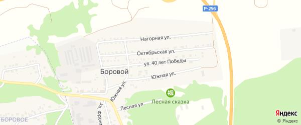 Улица 40 лет Победы на карте Борового поселка с номерами домов