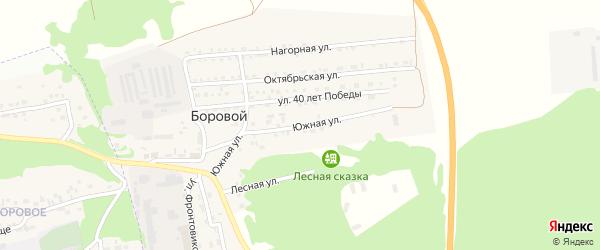 Южная улица на карте Борового поселка с номерами домов
