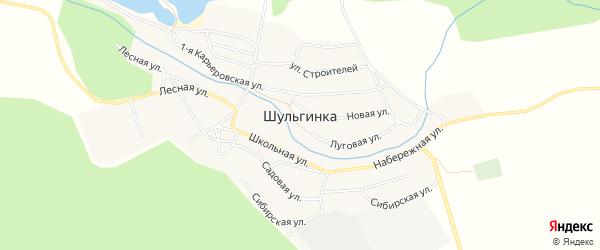 Карта села Шульгинки в Алтайском крае с улицами и номерами домов