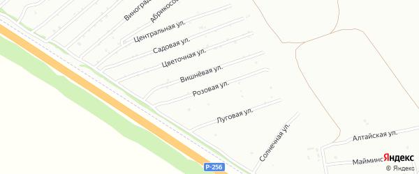 Розовая улица на карте садового некоммерческого товарищества Монтажника с номерами домов