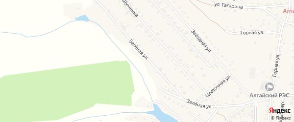 Зеленая улица на карте Алтайского села с номерами домов