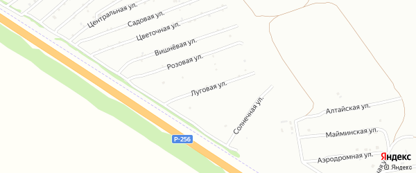 Луговая улица на карте садового некоммерческого товарищества Монтажника с номерами домов