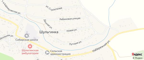 Новая улица на карте села Шульгинки с номерами домов