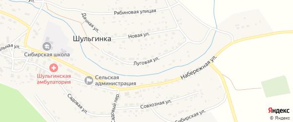 Луговая улица на карте села Шульгинки с номерами домов