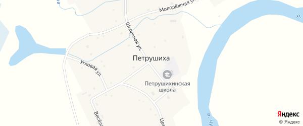 Береговая улица на карте села Петрушихи с номерами домов