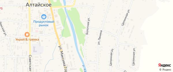 Болотная улица на карте Алтайского села с номерами домов