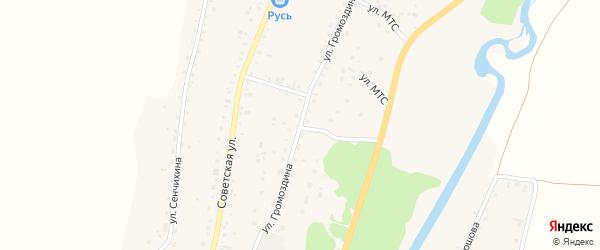Улица Н.Ф.Громоздина на карте Алтайского села с номерами домов