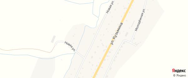 Новая улица на карте села Сараса с номерами домов