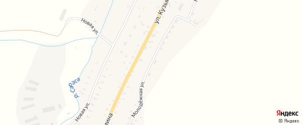 Молодежная улица на карте села Сараса с номерами домов