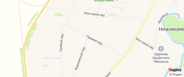 Прямой переулок на карте села Нижнекаменки с номерами домов