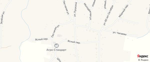 Улица Пушкина на карте села Нижнекаменки с номерами домов