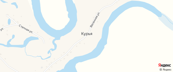Весенний переулок на карте села Курьи с номерами домов